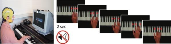 brain, jazz, classical