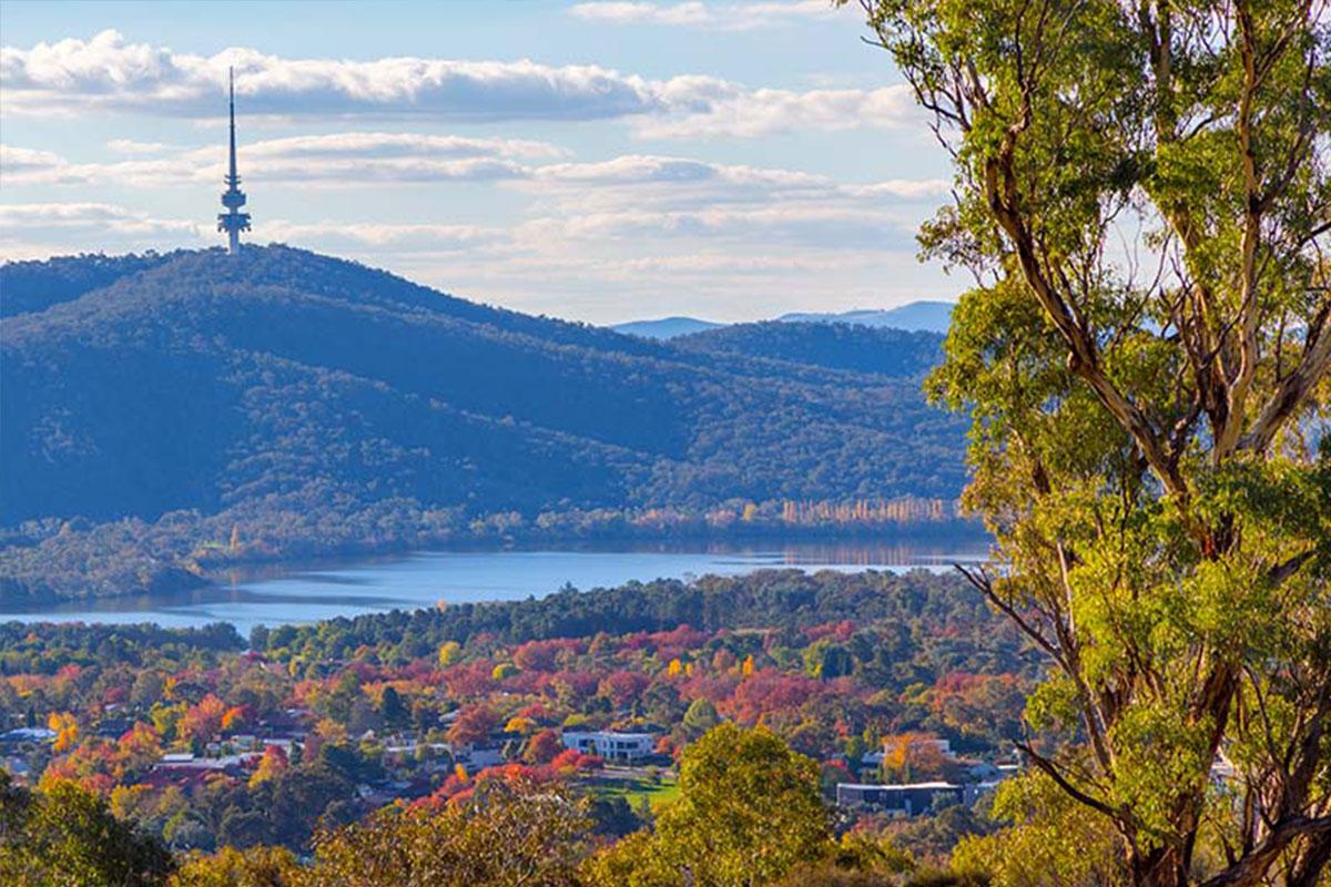 Black Mountain in Autumn. Photo by Steve Bittinger