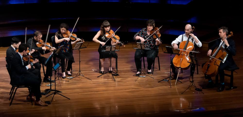 Musica Viva Festival, Dover Quartet, Goldner String Quartet