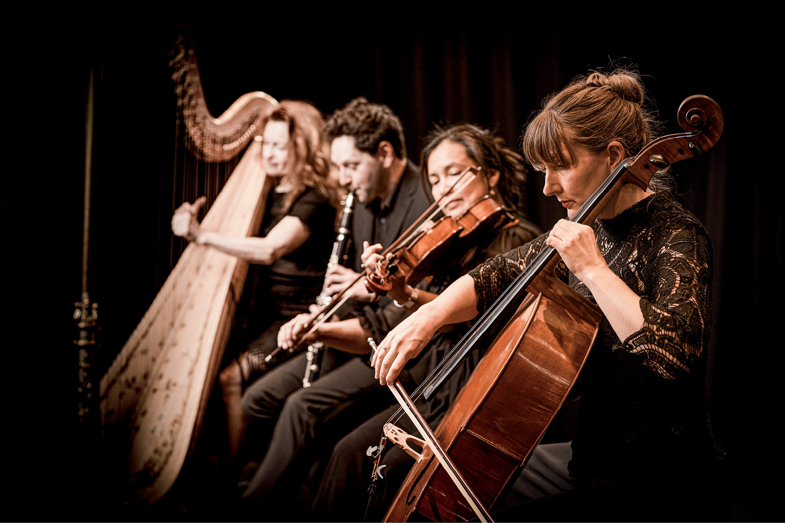 Musicians of the Adelaide Symphony Orchestra